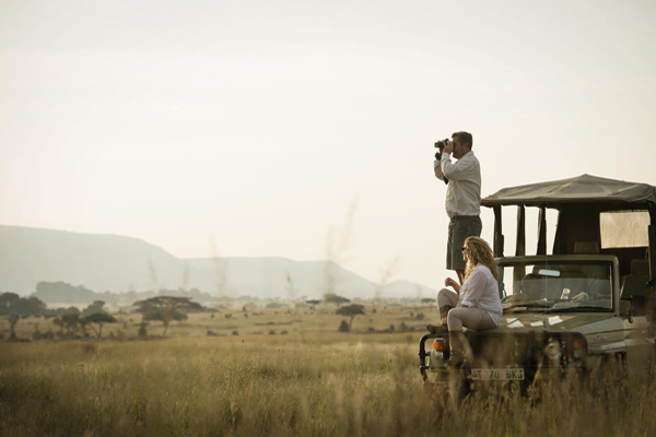 Game viewing in the Serengeti, Dunia Camp