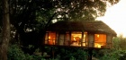 A treehouse at Manyara Treelodge