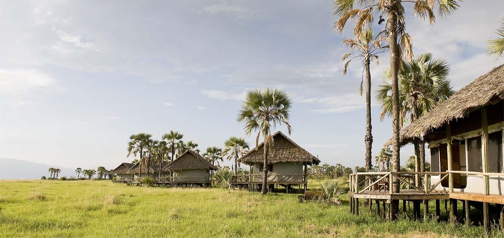 Maramboi Tented Lodge Tanzania