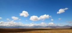The Ngorongoro Crater - the crater floor