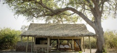 The rooms with thatched roofing