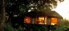 A treehouse at Manyara Treelodge