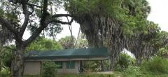 Lake Manze Camp - a tent