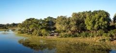 Tubu Tree - View