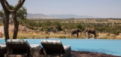 The infinity pool overlooking the waterhole
