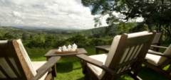 View from Gibb's Farm