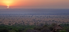 The main view from Serengeti Pioneer Camp