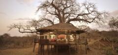 Tarangire Treetops - Bedroom