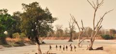 Zambia Walking Safari