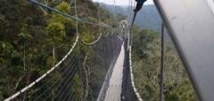 Nyungwe Forest Lodge - Rwanda