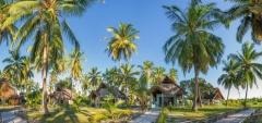 Butiama Beach - gardens