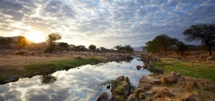 Ruaha River Lodge - River view