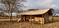 Legendary Serengeti Mobile Camp - Main area