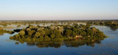 Jacana Camp - Aerial View
