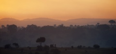 Nomad Lamai - Sunset view
