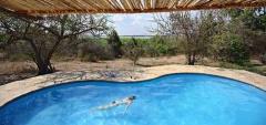 Roho Ya Selous - Pool