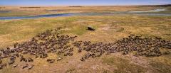 Liuwa Plain National Park