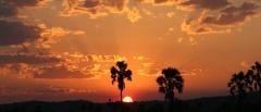 Sun set in Ruaha