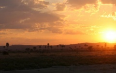 Sunset in Ruaha